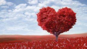 Coração de cristo, oferta perfeita
