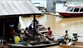 Os mais pobres da Amazônia ganham ajuda concreta do Papa Francisco