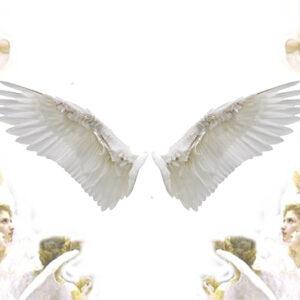 Os anjos e sua hierarquia